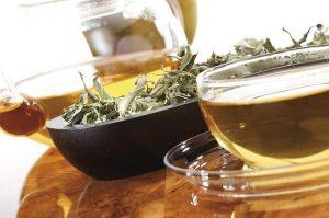 чай софоры от повышенного давления
