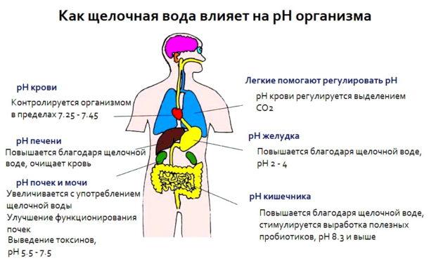 Влияние воды на РН крови