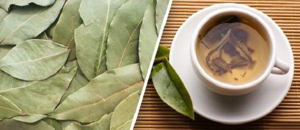 Эффективен ли лавровый лист для похудения?