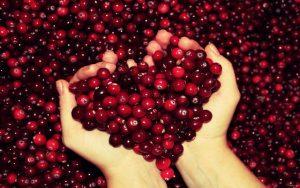 жменя ягод брусники в форме сердца
