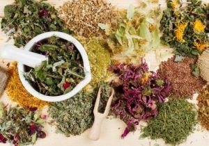 травы и давление, фитотерапия