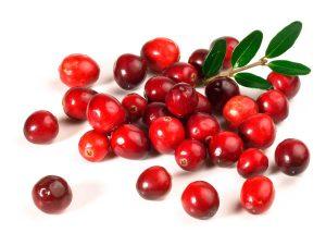 ягоды клюквы на белом фоне