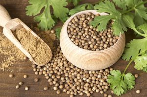 семена кориандра и кинза