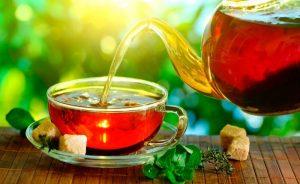чай из листьев толокнянки обыкновенной