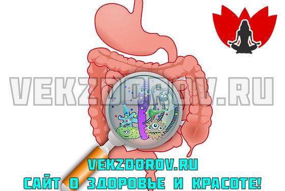 Что такое дисбактериоз?
