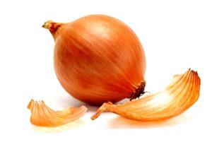 корнеплод лука на белом фоне
