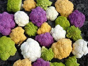 брокколи с зелеными и фиолетовыми соцветиями
