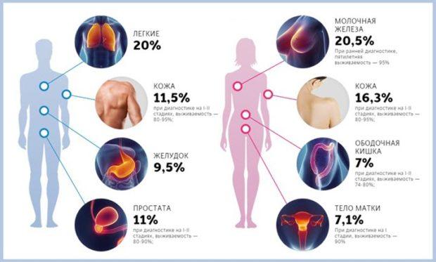 Процентное соотношение онкологических заболеваний